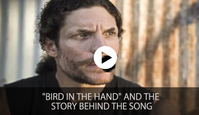 Bird in the Hand and the Story Behind the Song